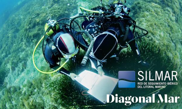 biólogos registran datos a partir de las observaciones submarinas
