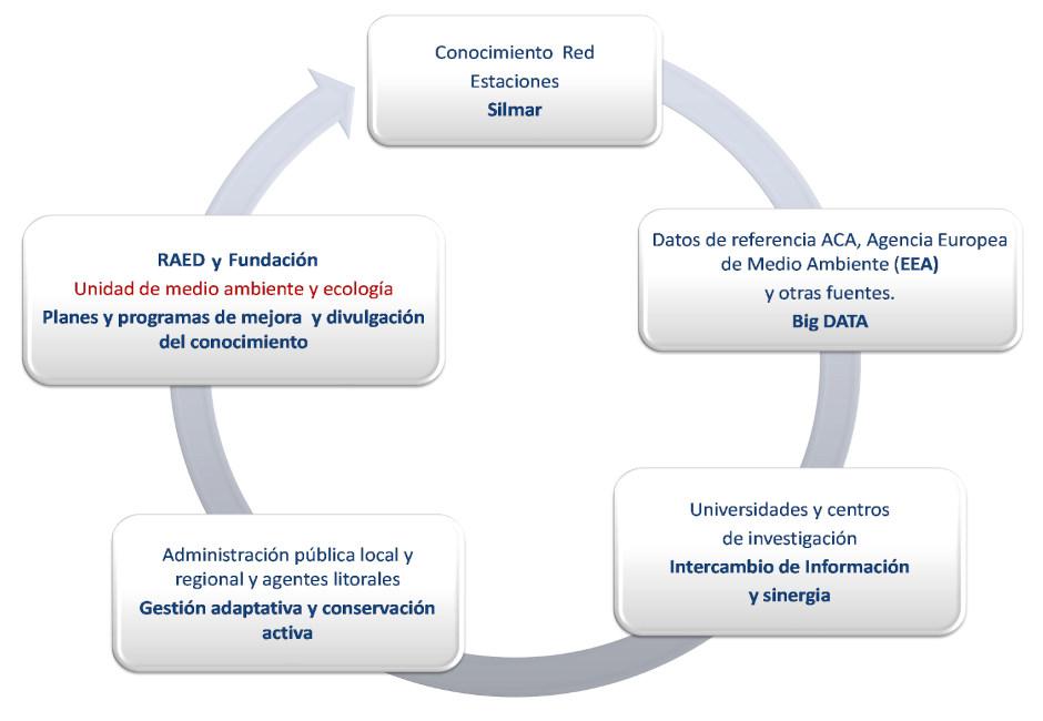 Diagrama de flujo de la información obtenida en la red Silmar
