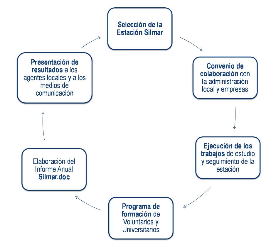 Diagrama de flujo del programa de acción anual en una estación Silmar